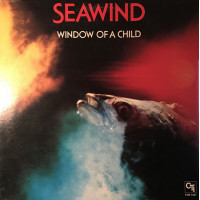 Window Of A Child